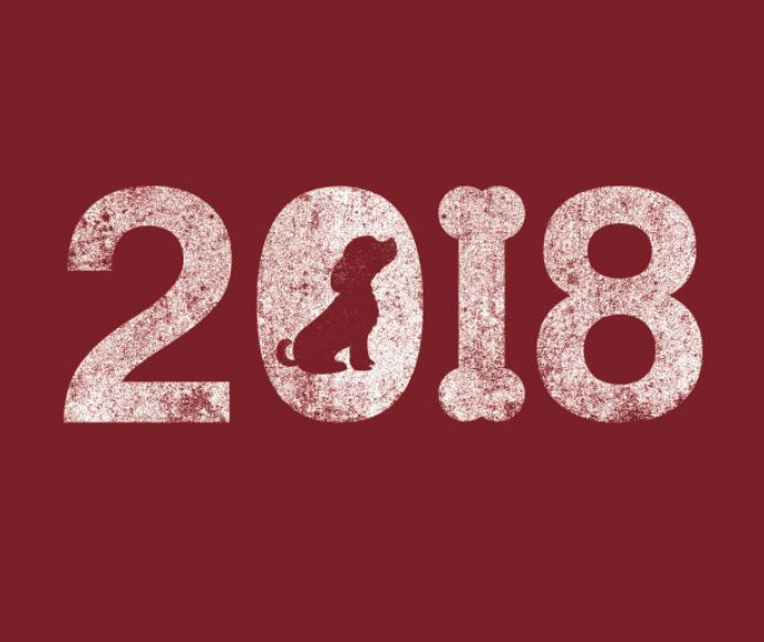 A Dog Year 2018 T Shirt