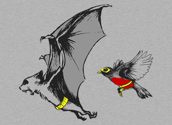 Bat and Robin T-Shirt (Batman & Robin)