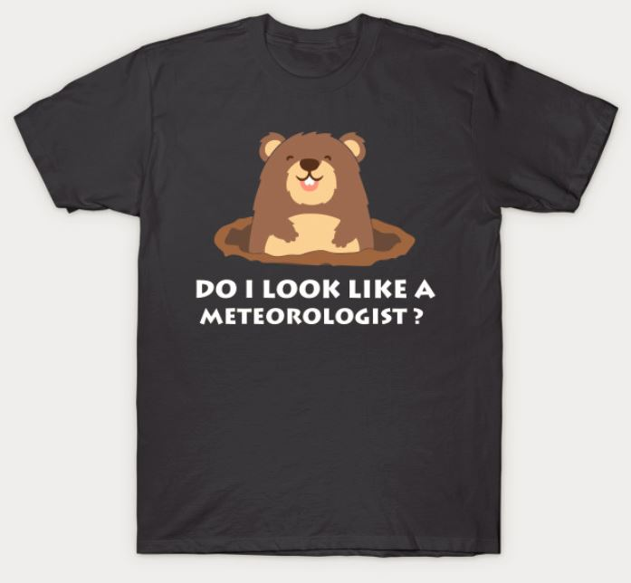 Do I Look Like a Meteorologist Groundhog Day T Shirt